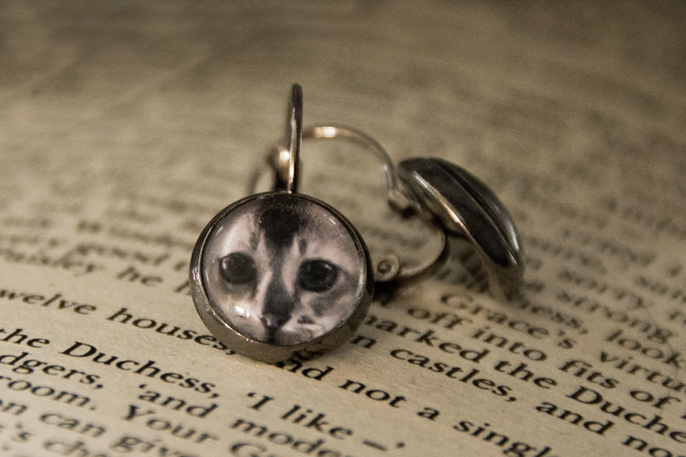 kitten-cat-photo-earrings-gunmetal-jewllery-rs