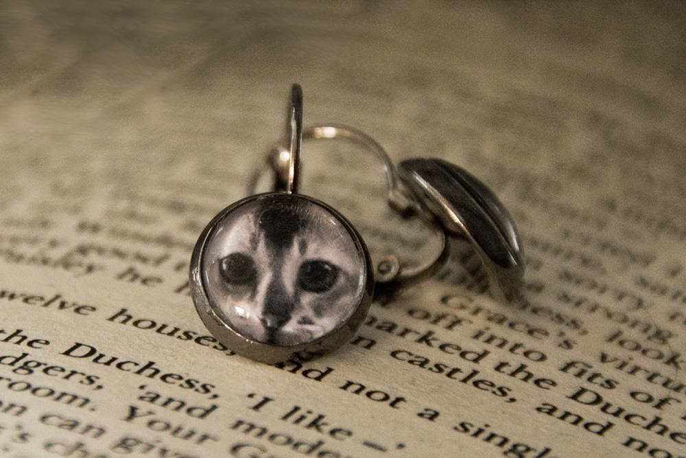 kitten-cat-photo-earrings-gunmetal-jewllery-rs