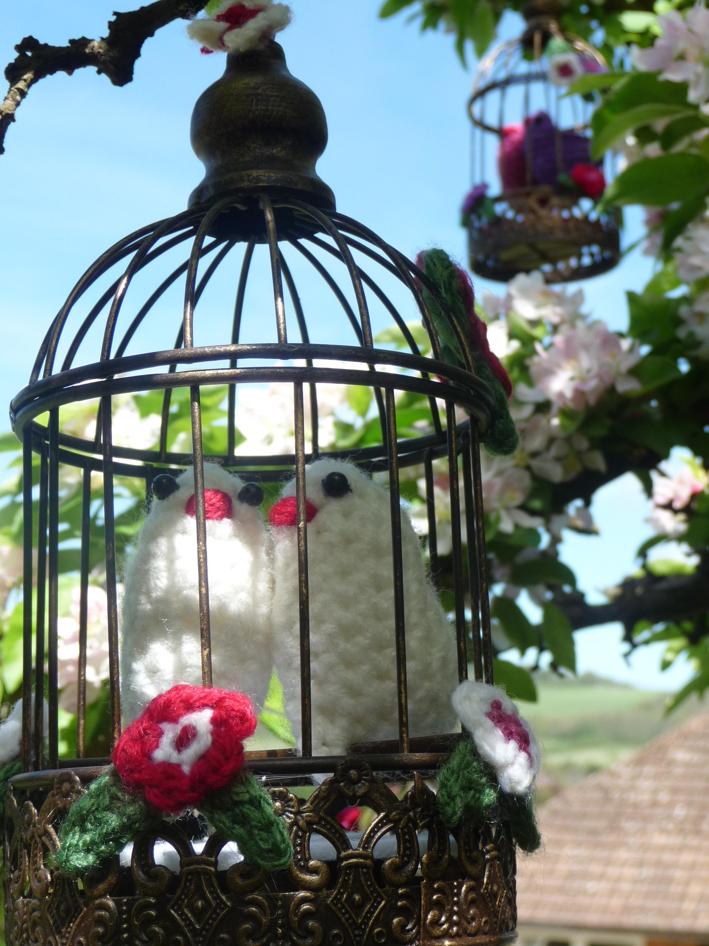 RW Birdcage
