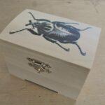 Beastie Boxes UK